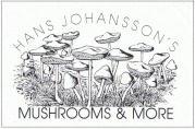 Mushrooms and more